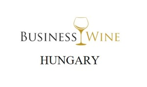 business management hungary business wine hungary logo white